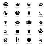 Διαφορετικά ίχνη των πουλιών και των ζώων Διανυσματικές μονοχρωματικές εικόνες στο άσπρο υπόβαθρο απεικόνιση αποθεμάτων