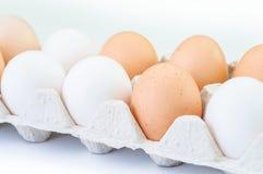 Διαφορετικά αυγά στο πακέτο χαρτοκιβωτίων που απομονώνεται στο λευκό Στοκ φωτογραφίες με δικαίωμα ελεύθερης χρήσης
