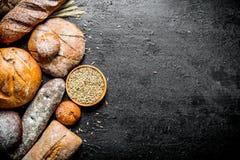Διαφορετικά είδη φρέσκου ψωμιού με το σιτάρι στο κύπελλο στοκ εικόνες με δικαίωμα ελεύθερης χρήσης