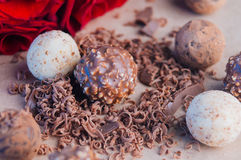Διαφορετικά είδη καραμελών τρουφών σοκολάτας κοντά στα ροδαλά λουλούδια Στοκ εικόνες με δικαίωμα ελεύθερης χρήσης