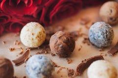 Διαφορετικά είδη καραμελών τρουφών σοκολάτας κοντά στα ροδαλά λουλούδια Στοκ φωτογραφία με δικαίωμα ελεύθερης χρήσης
