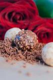 Διαφορετικά είδη καραμελών τρουφών σοκολάτας Στοκ φωτογραφία με δικαίωμα ελεύθερης χρήσης