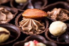 Διαφορετικά είδη κινηματογράφησης σε πρώτο πλάνο σοκολατών διάφορο pralin σοκολάτας Στοκ Φωτογραφίες