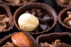 Διαφορετικά είδη κινηματογράφησης σε πρώτο πλάνο σοκολατών διάφορο pralin σοκολάτας Στοκ φωτογραφία με δικαίωμα ελεύθερης χρήσης