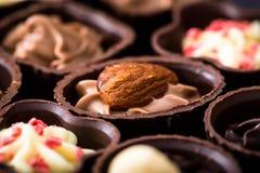 Διαφορετικά είδη κινηματογράφησης σε πρώτο πλάνο σοκολατών διάφορο pralin σοκολάτας Στοκ Εικόνα