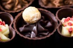 Διαφορετικά είδη κινηματογράφησης σε πρώτο πλάνο σοκολατών διάφορο pralin σοκολάτας Στοκ φωτογραφίες με δικαίωμα ελεύθερης χρήσης