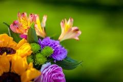 Διαφορετικά είδη φρέσκων λουλουδιών Στοκ Εικόνες