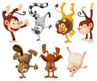 Διαφορετικά ζώα που κάνουν handstands ελεύθερη απεικόνιση δικαιώματος