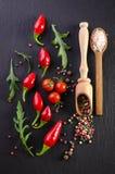 Διαφορετικά καρυκεύματα με την ντομάτα και πιπέρια στο μαύρο υπόβαθρο Στοκ Φωτογραφία