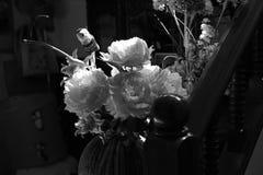 Διαφορετικά μέσα λουλουδιών που βγήκαν Στοκ εικόνα με δικαίωμα ελεύθερης χρήσης