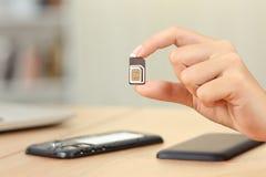 Διαφορετικά μεγέθη καρτών εκμετάλλευσης χεριών γυναικών sim Στοκ Φωτογραφία