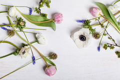 Διαφορετικά λουλούδια άνοιξη στο άσπρο ξύλο Στοκ Εικόνα