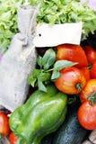 Διαφορετικά υγρά λαχανικά στον πίνακα Στοκ Εικόνες
