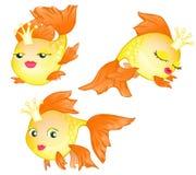 Διαφορετικά χρυσά ψάρια κινούμενων σχεδίων Στοκ εικόνες με δικαίωμα ελεύθερης χρήσης