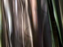 Διαφορετικά χρώματα των μίσχων μπαμπού Στοκ Φωτογραφίες