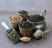 Διαφορετικές ποικιλίες του ξηρού τσαγιού Στοκ Φωτογραφία