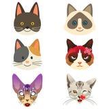Διαφορετική απεικόνιση έκφρασης Emoji γατών Στοκ Εικόνα