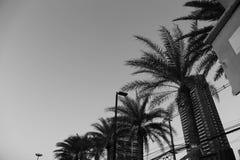 Διαφορετική γωνία της παραλίας στοκ φωτογραφίες με δικαίωμα ελεύθερης χρήσης