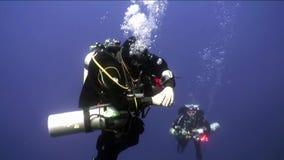 Διαφορετική κολύμβηση δύο σκαφάνδρων βαθιά υποβρύχια στη Ερυθρά Θάλασσα φιλμ μικρού μήκους