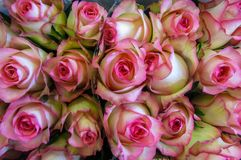 διαφορετική οδός αγοράς λουλουδιών ανθοδεσμών Δέσμες των ανθοδεσμών της πώλησης pinkor τριαντάφυλλων fgently στοκ εικόνα με δικαίωμα ελεύθερης χρήσης