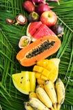 Διαφορετική τροπική έννοια διατροφής κατανάλωσης φρούτων ακατέργαστη Στοκ φωτογραφία με δικαίωμα ελεύθερης χρήσης