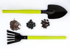 Διαφορετικοί μαύροι σπόροι, φτυάρι και τσουγκράνα Στοκ Φωτογραφία
