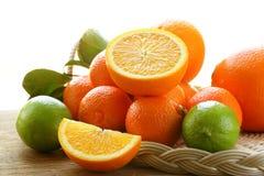 Διαφορετικοί τύποι εσπεριδοειδών, ασβέστης, πορτοκάλι στοκ εικόνα
