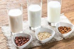 Διαφορετικοί τύποι μη γαλακτοκομικών γαλάτων στοκ εικόνα με δικαίωμα ελεύθερης χρήσης