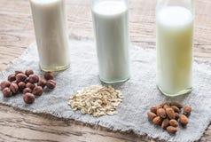 Διαφορετικοί τύποι μη γαλακτοκομικών γαλάτων στοκ φωτογραφίες με δικαίωμα ελεύθερης χρήσης
