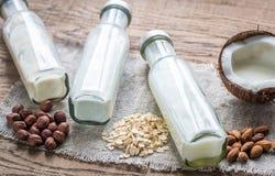 Διαφορετικοί τύποι μη γαλακτοκομικών γαλάτων στοκ φωτογραφία με δικαίωμα ελεύθερης χρήσης