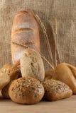 διαφορετικοί τύποι ομάδας ψωμιού Στοκ Εικόνα