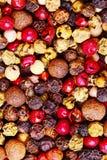 Διαφορετικοί τύποι πιπεριών στοκ φωτογραφίες με δικαίωμα ελεύθερης χρήσης