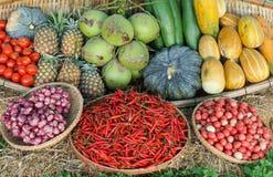 Διαφορετικοί τύποι ταϊλανδικών λαχανικών στοκ εικόνες