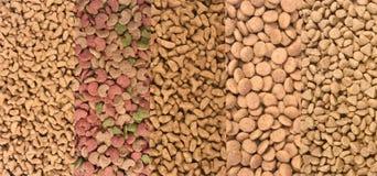 Διαφορετικοί τύποι τροφίμων γατών στοκ φωτογραφίες με δικαίωμα ελεύθερης χρήσης