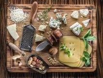 Διαφορετικοί τύποι τυριών με τα καρύδια και τα χορτάρια στοκ εικόνες