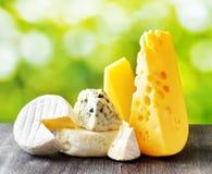 Διαφορετικοί τύποι τυριών στο υπόβαθρο φύσης στοκ φωτογραφία