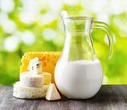 Διαφορετικοί τύποι τυριών στο υπόβαθρο φύσης στοκ εικόνα με δικαίωμα ελεύθερης χρήσης