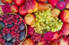 Διαφορετικοί τύποι φρούτων και σμέουρων στοκ εικόνα