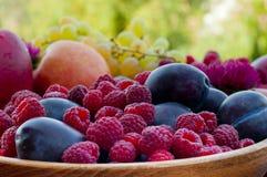 Διαφορετικοί τύποι φρούτων στοκ εικόνα