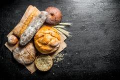 Διαφορετικοί τύποι ψωμιών με το σιτάρι και spikelets στοκ φωτογραφία