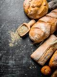 Διαφορετικοί τύποι ψωμιών με το σιτάρι στοκ εικόνες