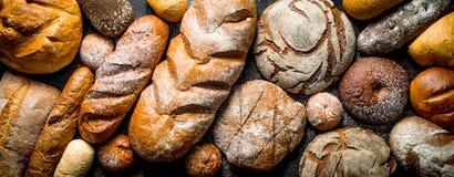 Διαφορετικοί τύποι ψωμιών στοκ εικόνα