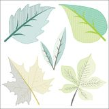 Διαφορετικός βγάζει φύλλα στην τέχνη συνδετήρων Στοκ εικόνα με δικαίωμα ελεύθερης χρήσης