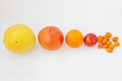 Διαφορετικός τύπος εσπεριδοειδών Εξωτικό κουμκουάτ φρούτων με το πορτοκάλι, blo Στοκ φωτογραφία με δικαίωμα ελεύθερης χρήσης