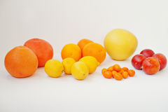 Διαφορετικός τύπος εσπεριδοειδών Εξωτικό κουμκουάτ φρούτων με το πορτοκάλι Στοκ Φωτογραφία