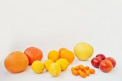 Διαφορετικός τύπος εσπεριδοειδών Εξωτικό κουμκουάτ φρούτων με το πορτοκάλι, lemo Στοκ εικόνα με δικαίωμα ελεύθερης χρήσης
