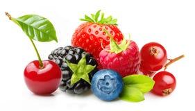 Διαφορετικός τύπος φρούτων μούρων που απομονώνεται στοκ φωτογραφία με δικαίωμα ελεύθερης χρήσης