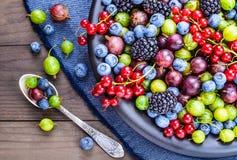 Διαφορετικό πιάτο μούρων Στοκ φωτογραφία με δικαίωμα ελεύθερης χρήσης