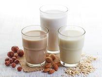 Διαφορετικό vegan γάλα Στοκ εικόνα με δικαίωμα ελεύθερης χρήσης