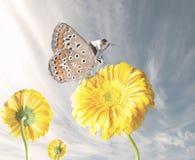Διαφυγές επιχειρηματιών με μια πεταλούδα Στοκ Εικόνα